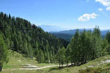 Blejska koča se nahaja na planini Lipanci globoko pod vrhom Mrežce. Mimo nje vodi planinska pešpot na priljubljeno Debelo peč.
