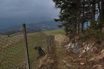 Na Bukovem vrhu se vidijo vrhovi Škofjeloškega hribovja in del Kamniško-Savinjskih Alp.