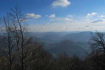 Čemšeniška planina je družinski izlet in krožna pot v naravi. Vidijo se Posavski hribi. Na vrhu so igrala za otroke.