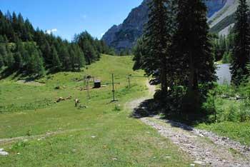Dom na Zelenici je odlično izhodišče do Begunjščice ali Vrtače.