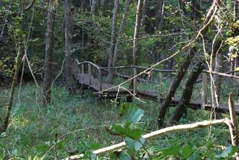 Krožna učna pot Grabnarica je tudi kot družinski izlet za otroke. Potek ob potoku in skozi vasi Lancovega.
