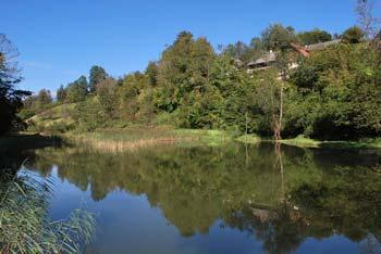 Grabnarica je slikovit potok pod Jelovico po katerega dolini nas vodi učna pot.