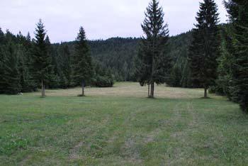 Dom na Travni gori nad Novo Štifto je izhodišče za Kamni grič.