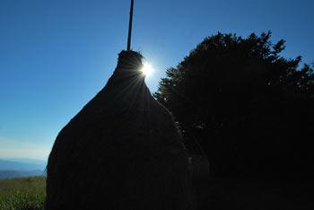 Kojca ima razgled na sosednji Porezen in proti Bevkovemu vrhu in severno na Kobiljo glavo.