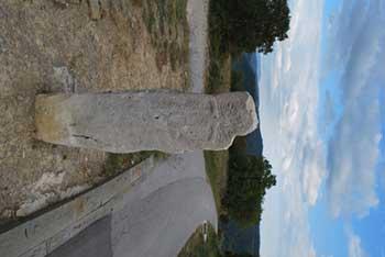 Krkavče so vas na Koprskih brdih nad dolino Dragonje znano po skrivnostnem menihirju.