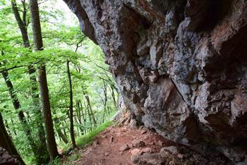 S Krvavice se odpre pogled na bližnje vrhove, ter proti gradu Žovnek.