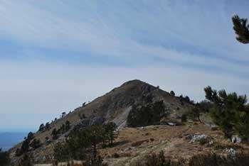 Kucelj na Čavnu se nahaja visoko na robu Trnovskega gozda nad Vipavsko dolino.