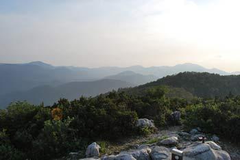 Mali Golak je najvišji vrh Trnovskega gozda.