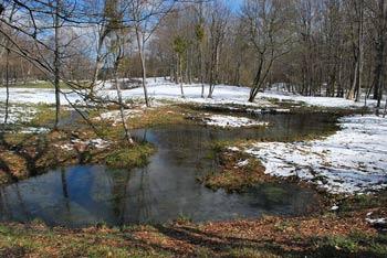 Miklavž na Gorjancih je priljubljena izletniška točka na robu planotastega ravnika.