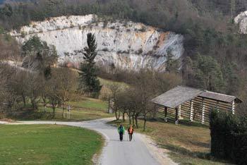 Orle so staro naselje na robu Ljubljane blizu Molnika, Marenčka in Svetega Urha.