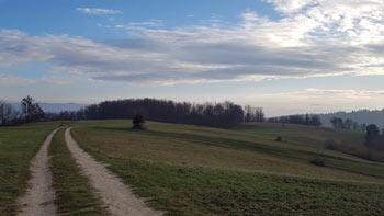Osrenca se nahaja nad Javorjem. Do nje lahko pridemo tudi iz Bogenšperka ali doline potoka Bukovice.