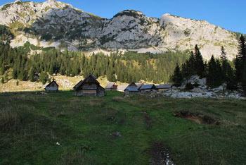 Na planino v Lazu gremo iz planine Blato. Pot je primerna tudi za družinski izlet z otroki..
