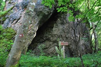 Rimski zid pod Jerebičjo skalo se nahaja nad Rakitno.