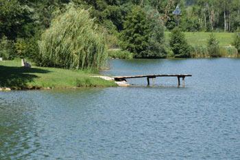 Škalsko jezero predstavlja odličen sprehod za otroke, saj je okoli njega sprehajalna in učna pot.