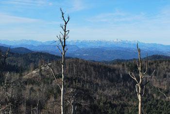 Iz Špilnika se odpre širok razgled proti severu, preko Idrijskega in Cerkljanskega na Julijce.
