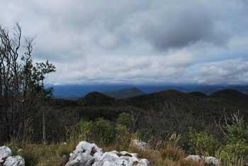 Suhi vrh je navišja vzpetina Nanoške planote, nahaja pa se blizu Križne gore.
