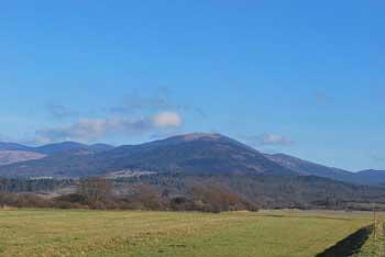 Sveta Trojica je razgleden vrh. Obkrožajo jo hribi Pivškega podolja in Javorniki. Primerna je kot družinski izlet v naravi.