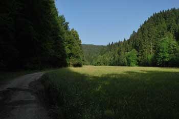 Talež ima planinsko kočo, nahaja pa se na robu Jelovice in nudi razgled na Stol, Belščico, Golico in ostale vrhove zahodnih Karavank.