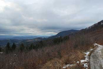 Tolsti vrh se nahaja na pogorju Konjiške gore nad Žičami.