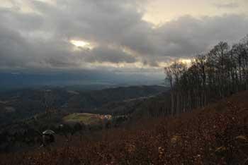 Do Tolstega vrha nad Slovenskimi Konjicami se povzpnemo od Žičke kartuzije.