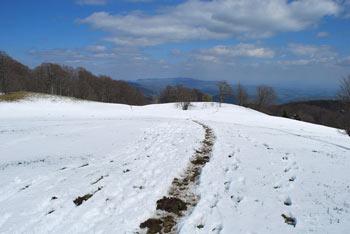 Trdinov vrh je najvišji predel Gorjancev. Nanj se odpravimo pri izviru Gospodična.