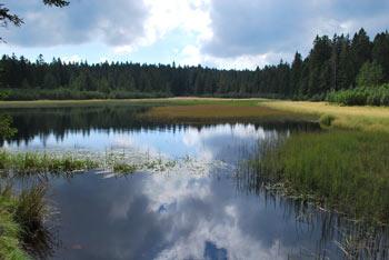 Do Treh kraljev na Pohorju nas vodi pot mimo Črnega jezera.