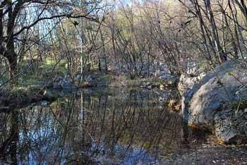 Vitovsko jezero pod Sveto Marijo je edino naravno jezero v Vipavski dolini. .