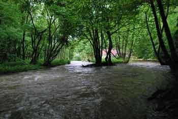 Zijalo je slikovit izvir reke Temenice.