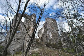 Žusem je poimenovan po istoimenskem gradu, ki je bil na robu Sotelskega gričevja in Posavskega hribovja postavljen v obrambo pred Madžari.