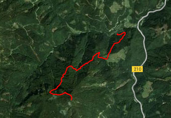 GPS sled za na pot na Dravh ni potrebna, saj je orientacija zelo lahka.