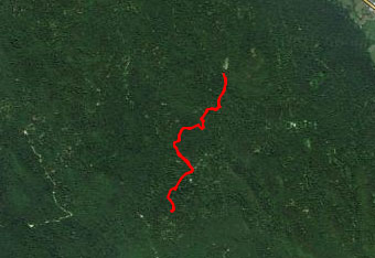 Pot do Nagelbihla nas vodi skozi globok gozd Stojne, zato priporočamo uporabo GPS navigacije.