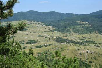 Bele stene se nahajajo ob vznožju obsežnih gozdov notranjskih Javornikov in Snežnika.