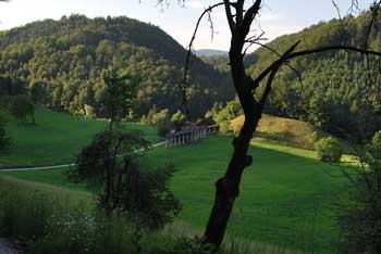 Gorenja gora je blizu Mirenskega gradu, nanjo pa vodi pozabljena pot Speča lepotica s katere se proti Trebnjemu vrhu.