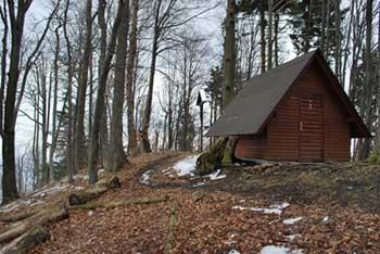 Gozdnik je eden višjih vrhov Posavskega hribovja med Mrzlico in Šmohorjem.