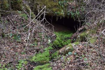 Pot k izviru Baba nas vodi mimo številnih bajerjev in ob potoku, ki izvira nedaleč stran. .