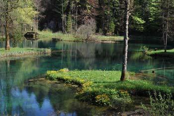 Izvir Rakitnice je pod Veliko goro, kjer gremo mimo Okamenelih svatov. Blizu je tudi izvir Ribnice.