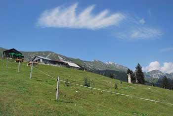 Dom na Kofcah se nahaja na poti na Veliki vrh in proti Velikemu Kladivu zahodno.