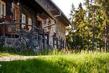Kolesarska pot po Zreškem Pohorju nas vodi od Rogle do Klopnega vrha.