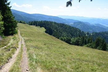 Kremžarjev vrh nad Slovenj Gradcem na Pohorju.