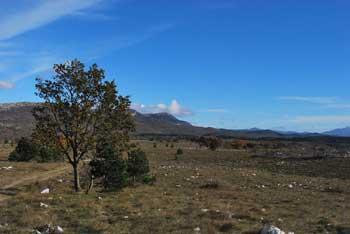 Kuk se spusti na greben Lačne nad Hrastovljami.