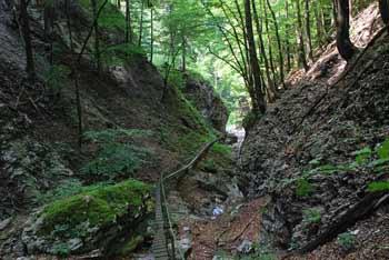 Do male hidroelektrarne pod Petrovim Brdom vodi izjemno atraktivna pot.