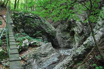 MHE pod Petrovm Brdom se nahaja v globoki grapi nad brunarico Slap.