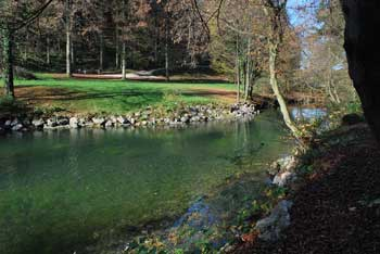 Močilnik je eden izmed več izvirov Ljubljanice ob vznožju Menišije in Ljubljanskega barja.