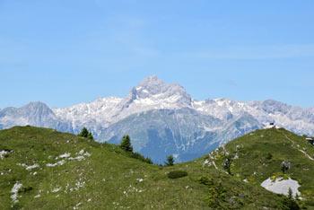 Možic je razgleden vrh nad Soriško planino s katerega se odpre lep pogled na gore okoli Triglava.