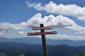 Mrežce je manj znani vrh na grebenu med Viševnikom in Debelo pečjo visoko nad dolino Krmo.