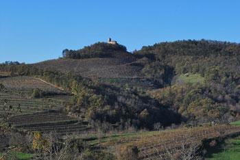 Na Obeluncu stoji cerkev Marije Snežne. Pot nas vodi preko vasi Goče nad Vipavsko dolino.