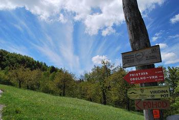 Obolno je zaobljen in prostran vrh nad Ivančno Gorico.