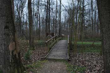 Otok ljubezni je rečni rokav Mure poleg znamenitega mlina na reki.