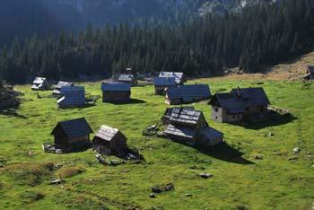 Planina v Lazu se nahaja visoko nad Bohinjskim jezerom pod visokim Debelim vrhom..