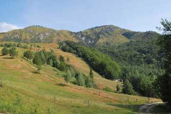 Planjava pri Kamniškem vrhu je del strmega grebena pod Krvavcem.